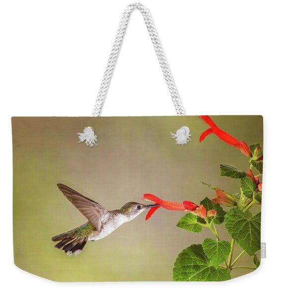 Hummingbird Weekender Tote Bag