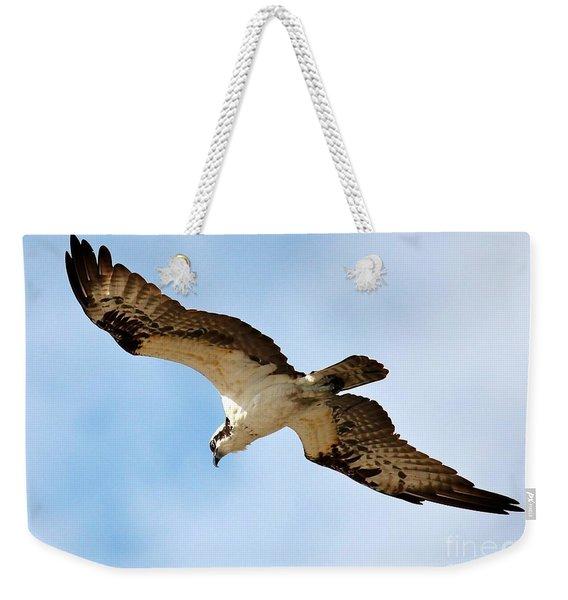 Hunter Osprey Weekender Tote Bag