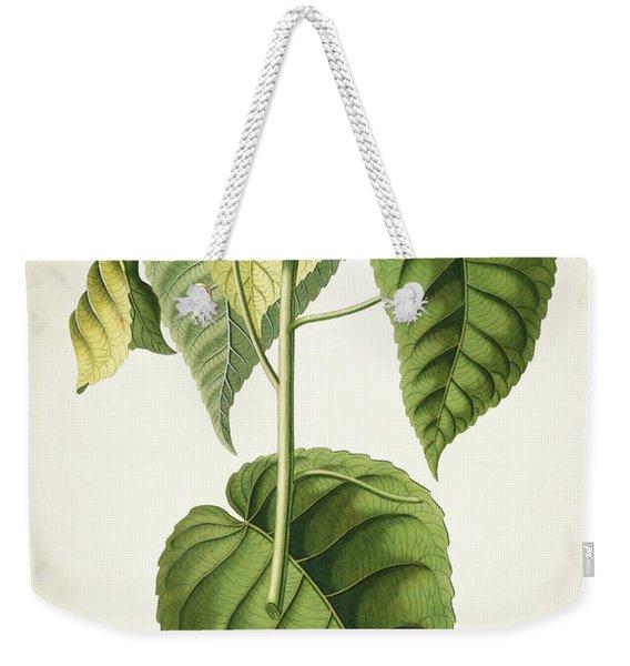 Hura Botanical Print Weekender Tote Bag