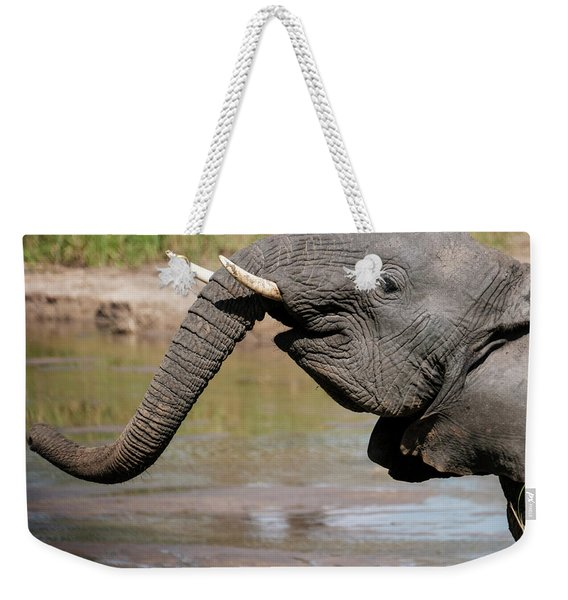Weekender Tote Bag featuring the photograph I Feel Happy by Mary Lee Dereske