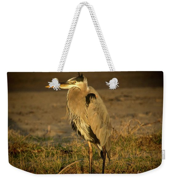 I Know They Are Coming Wildlife Art By Kaylyn Franks Weekender Tote Bag