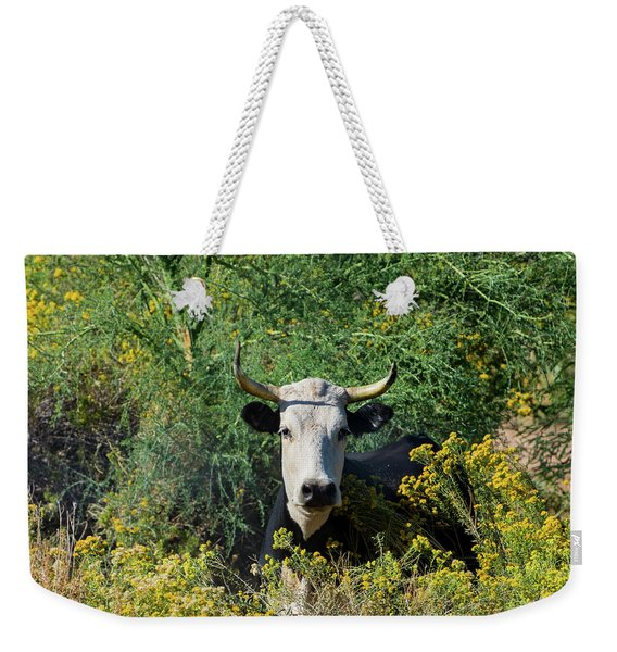 I Picked These For Moo Weekender Tote Bag