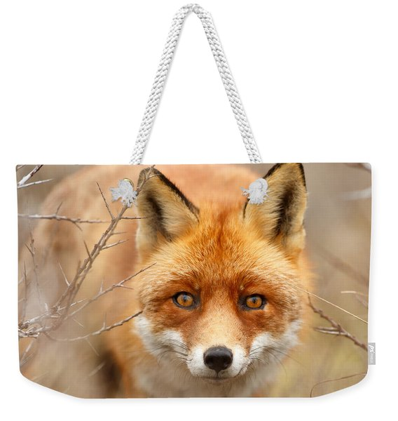 I See You - Red Fox Spotting Me Weekender Tote Bag