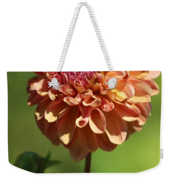 Iced Tea Dahlia In Marzipan And Milano Tones Weekender Tote Bag