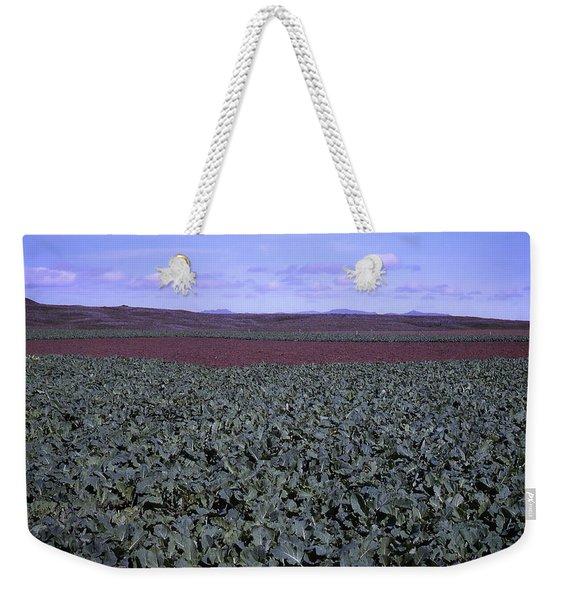 Icelandic Field Of Rutabaga Weekender Tote Bag