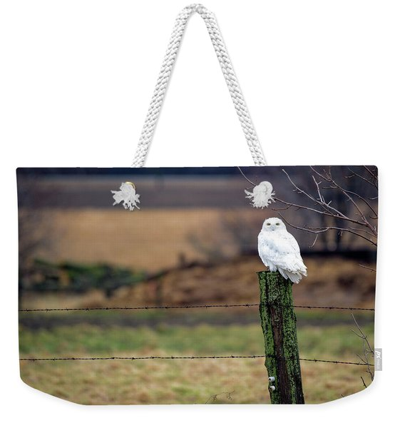 Weekender Tote Bag featuring the photograph ICU by Doug Gibbons