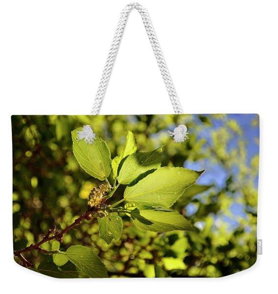 Illuminated Leaves Weekender Tote Bag
