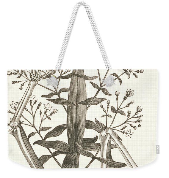 Illustration From Ilsee, Princess De Tripoli, 1897  Weekender Tote Bag