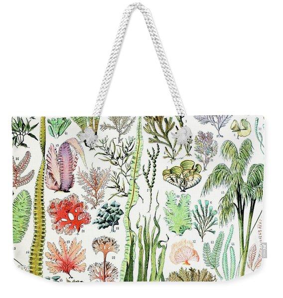 Illustration Of Algae And Seaweed  Weekender Tote Bag