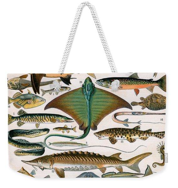 Illustration Of Ocean Fish Weekender Tote Bag