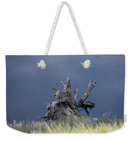 Weekender Tote Bag featuring the photograph Stump Chambers Lake Hwy 14 Co by Margarethe Binkley