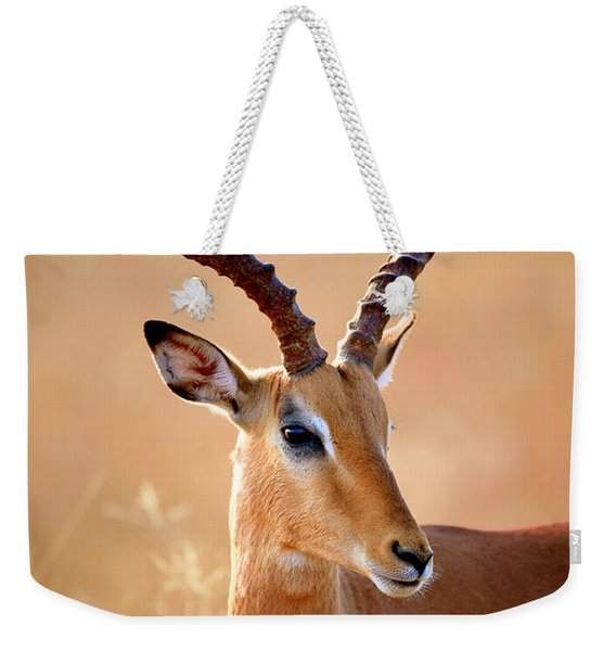 Impala Male Portrait Weekender Tote Bag