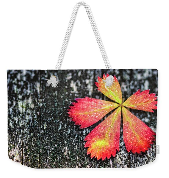 Impressions Of Autumn Weekender Tote Bag