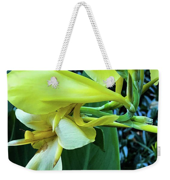In Character Weekender Tote Bag