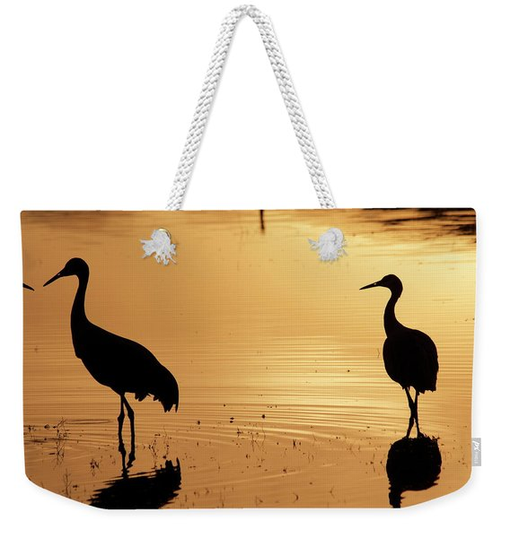Weekender Tote Bag featuring the photograph In Love Again by Michael Lucarelli
