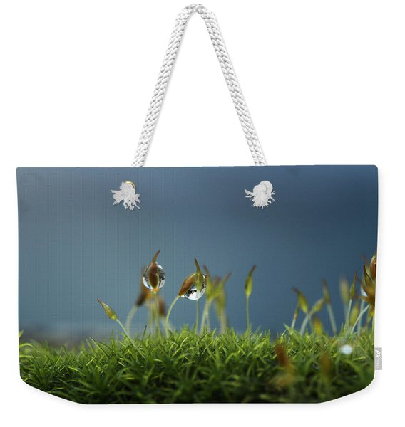 In Moss World .. Rain Weekender Tote Bag