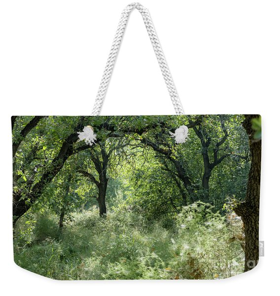 Weekender Tote Bag featuring the photograph In The Forest Thickets by Arik Baltinester