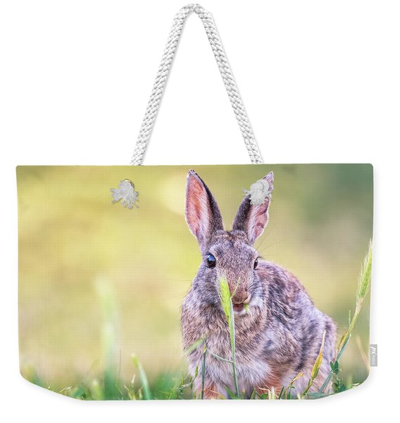 In The Wild Weekender Tote Bag