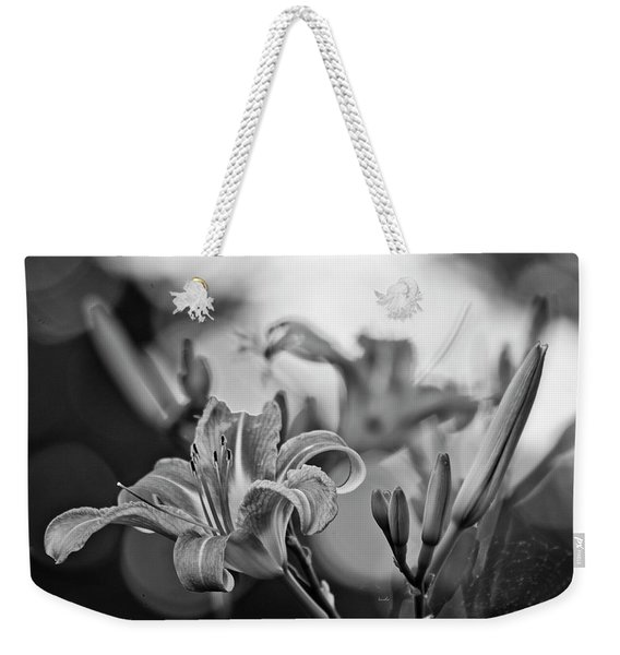 In Your Front Yard Weekender Tote Bag