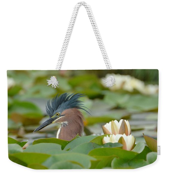 Incognito 2 Weekender Tote Bag