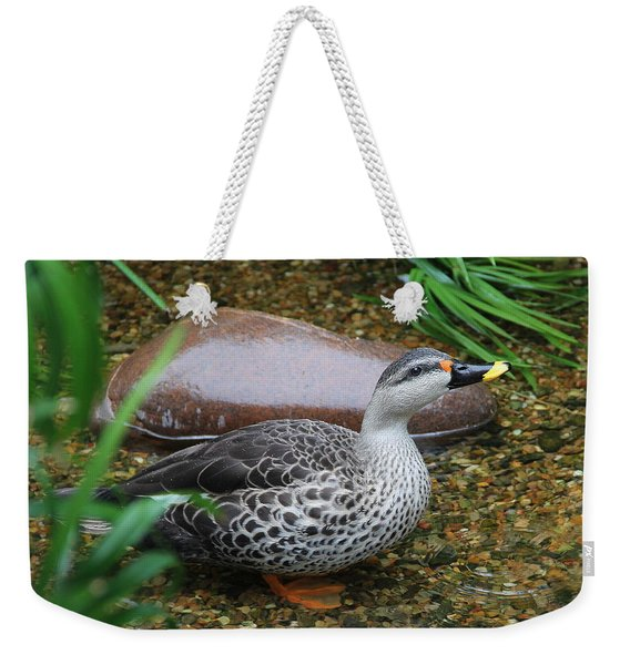 Indian Spot-billed Duck Weekender Tote Bag