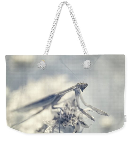 Weekender Tote Bag featuring the photograph Infrared Praying Mantis 2 by Brian Hale