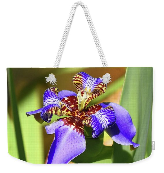Weekender Tote Bag featuring the photograph Inner Secrets by Sally Sperry