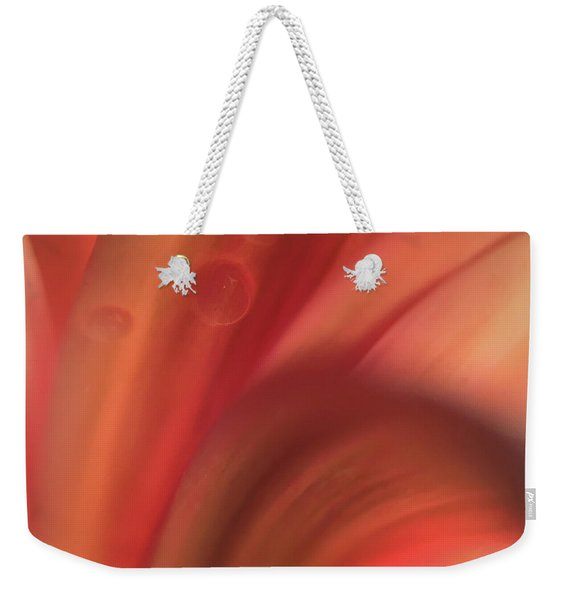 Inside Jupiter, Artists Rendition Weekender Tote Bag
