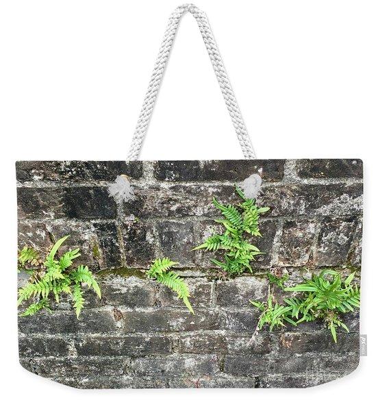 Intrepid Ferns Weekender Tote Bag