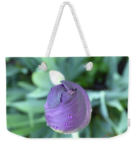Iris After The Rain V Weekender Tote Bag