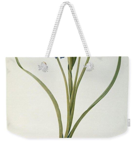 Iris Xyphioides Weekender Tote Bag