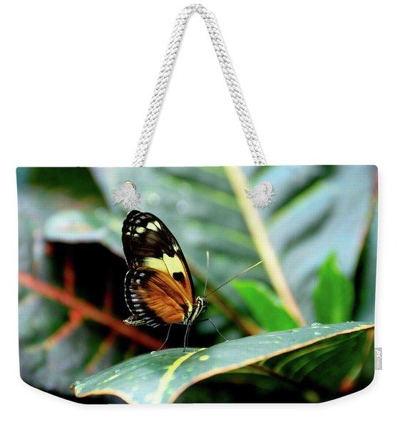 Ismenius Tiger Butterfly-2 Weekender Tote Bag