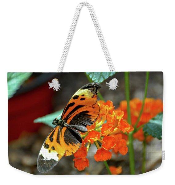 Ismenius Tiger Butterfly Weekender Tote Bag
