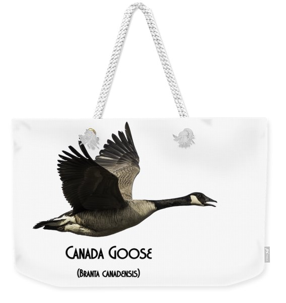 Isolated Canada Goose 2015-1 Weekender Tote Bag