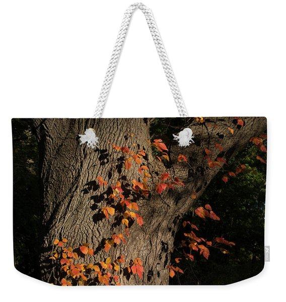 Ivy In The Fall Weekender Tote Bag