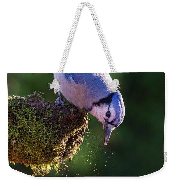 Jay With Acorn Weekender Tote Bag