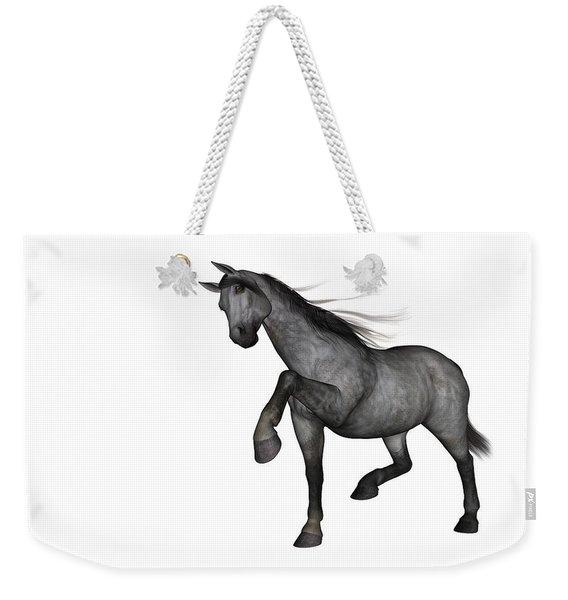 Joaquin Weekender Tote Bag