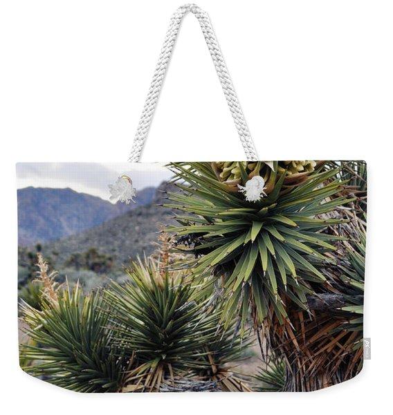 Joshua Tree Bloom Rainbow Mountain Weekender Tote Bag