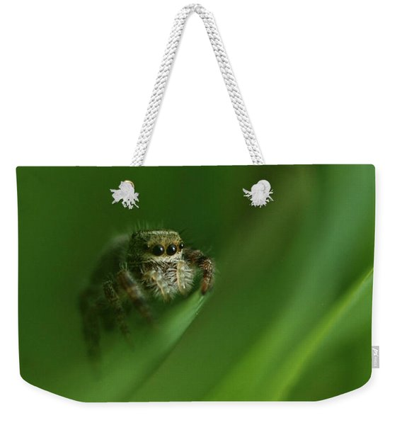 Jumping Spider Contemplating Life Weekender Tote Bag