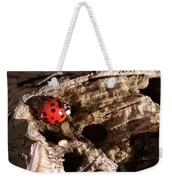 Just A Place To Rest Weekender Tote Bag
