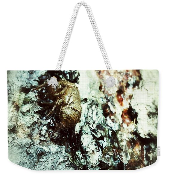 Just A Shell Weekender Tote Bag