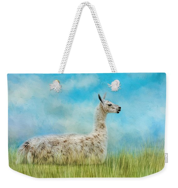 Just Chillin Weekender Tote Bag