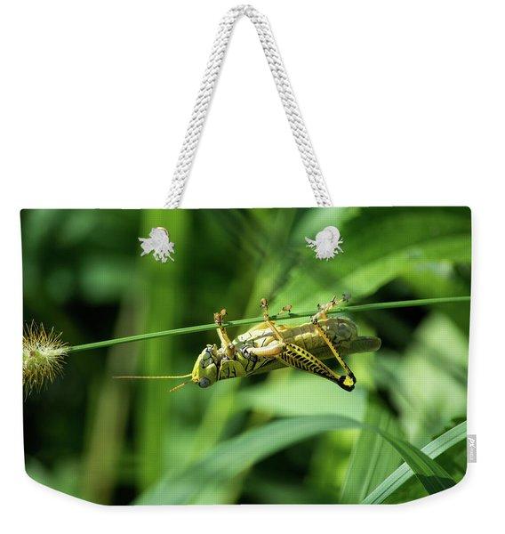 Just Hangin Around Weekender Tote Bag