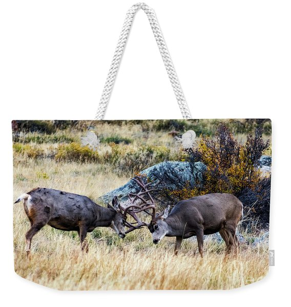 Just Playing  Weekender Tote Bag