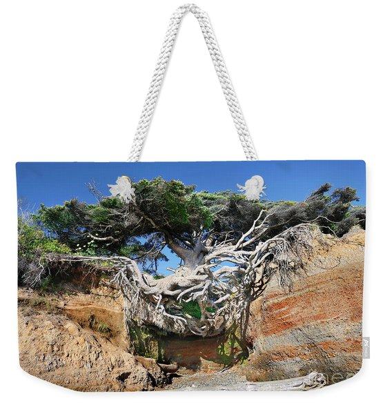 Kalaloch Tree Of Life Weekender Tote Bag