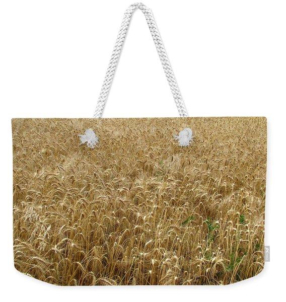 Kansas Wheat Weekender Tote Bag