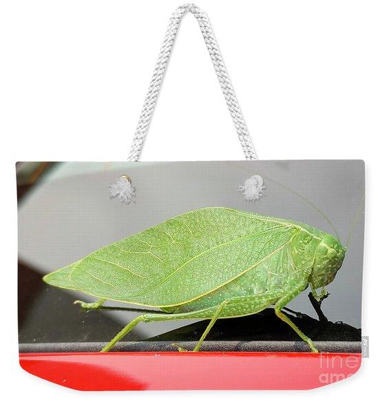 Katydids- Bush Crickets Weekender Tote Bag
