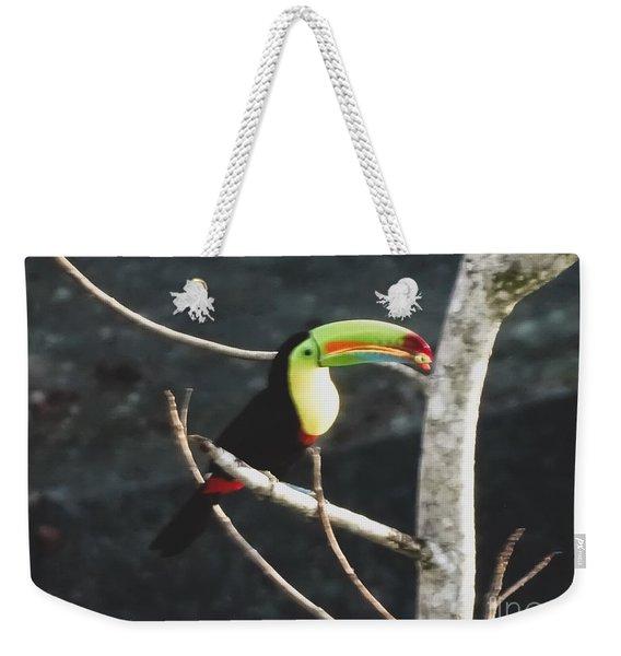 Keel-billed Toucan Weekender Tote Bag