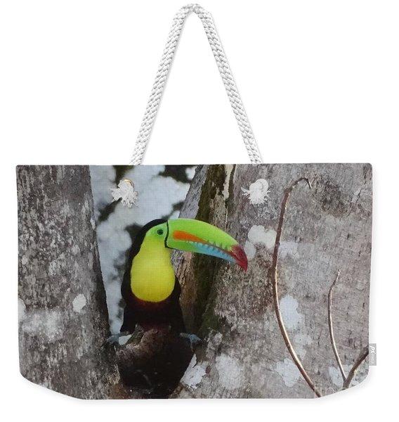 Keel-billed Toucan #2 Weekender Tote Bag