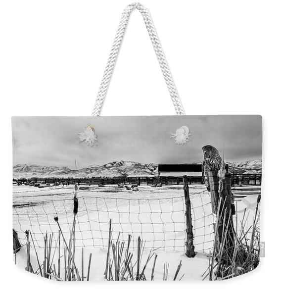 Keeping Watch Black And White Weekender Tote Bag